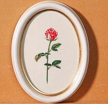Rose Manuela