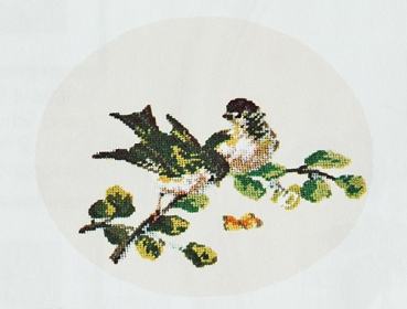 Siskin Couple - background embroidered